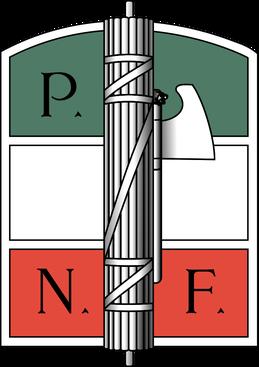 Cenni sul reato di riorganizzazione del disciolto PNF